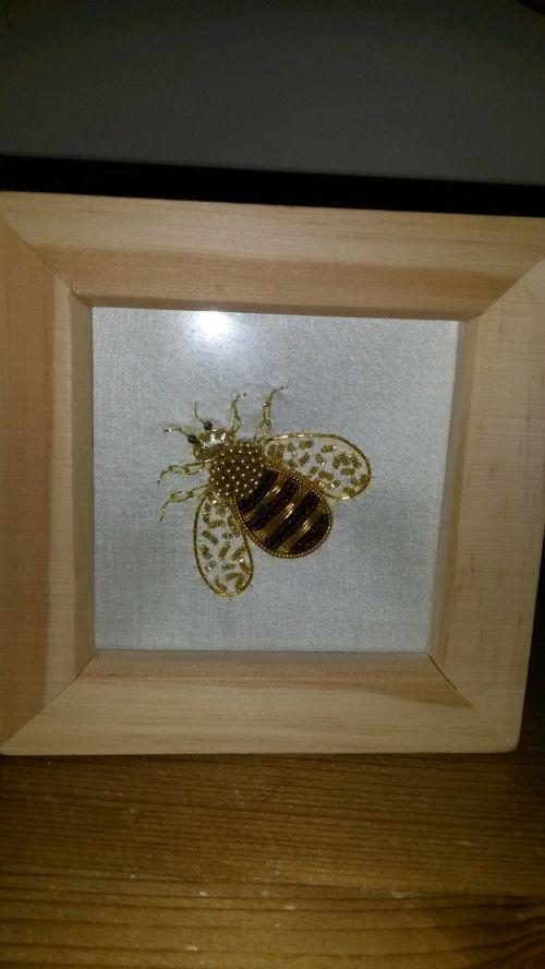 Nicola's bee